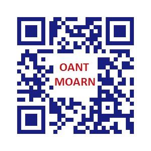 Deze afbeelding heeft een leeg alt-attribuut; de bestandsnaam is QR-Oant-Moarn.jpg